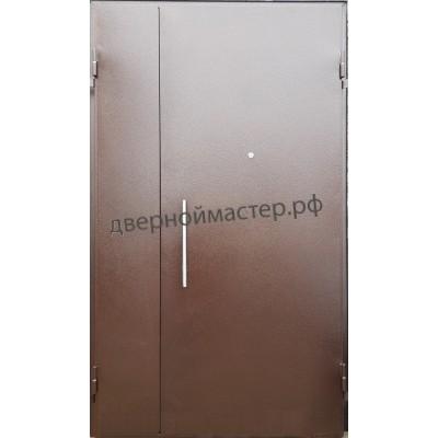 Двери металлические двустворчатые10